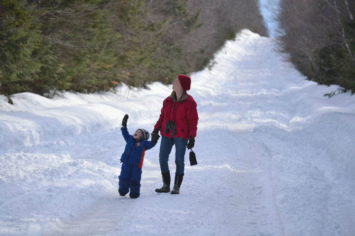 Mother birding with child in snow.